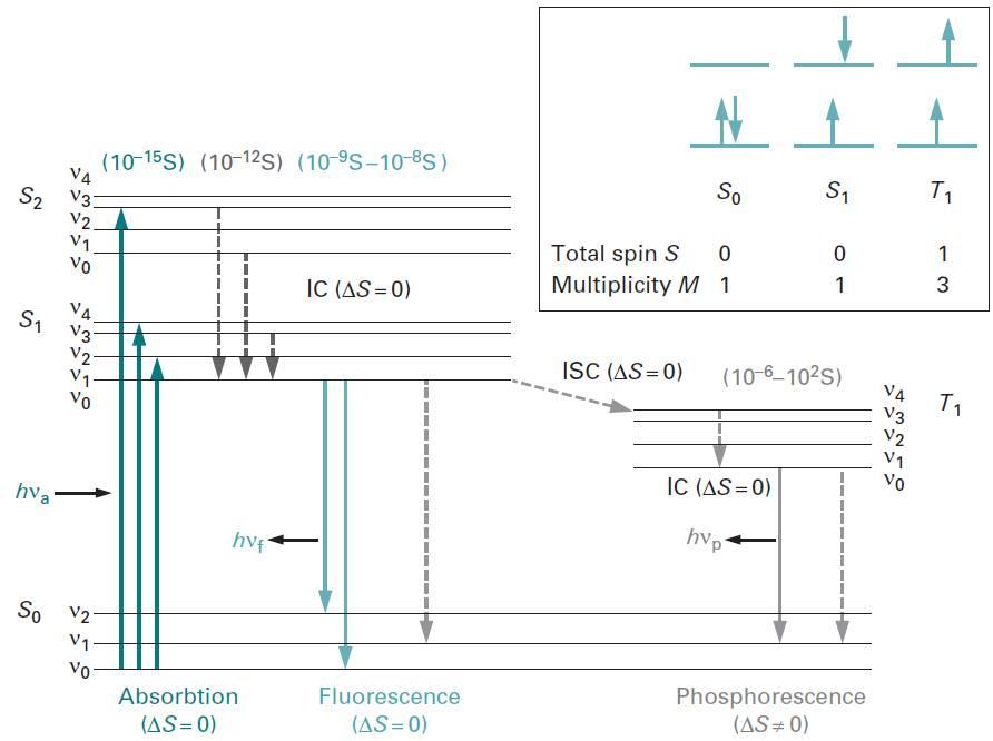 حالت های الکترونیکی و ارتعاشی در خطوط افقی ترسیم می شوند و خطوط عمودی انتقال های احتمالی را نشان می دهند.